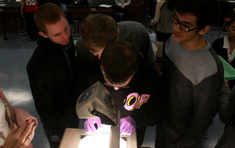 Nick Taylor (11), Luis Cortez (11), Jacob Dulski (11) and Austin Praski (11) view the DNA marks on their gel square.  This lab taught students about comparing different DNA samples.