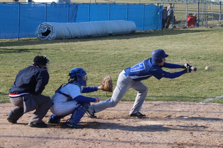 Dobos-freshman+baseball+2
