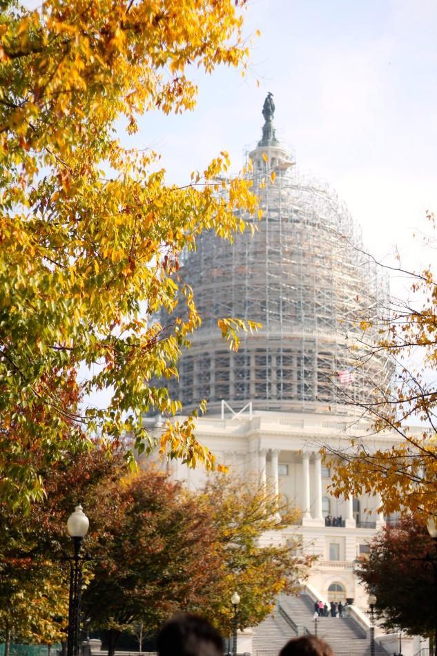 The United States Capitol is framed by autumn leaves. The Publications class traveled to the Capitol after a trip to the Newseum.