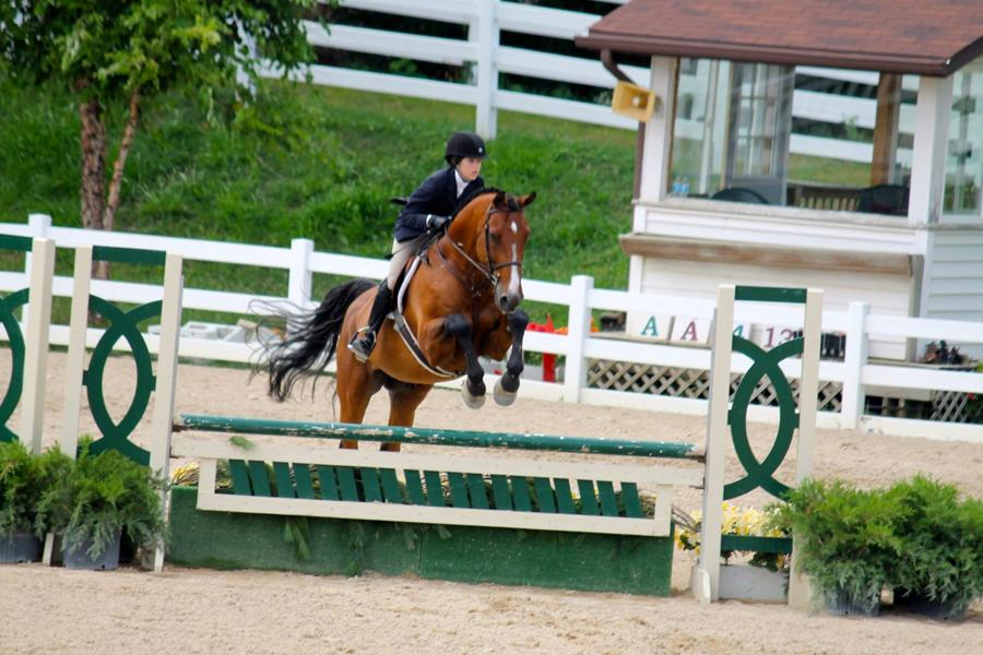 Andria+Talavera+%2811%29+competes+in+the+Perfecta+Farm+Horse+Show+at+Ledges+Sport+horse+last+August.+Talavera+placed+3rd+out+of+15+riders.+Photo+submitted+by%3A+Andria+Talavera++
