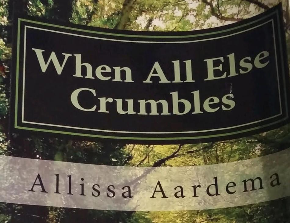 Allissa Aardema's (12) book, When All Else Crumbles, is a science fiction novel focused around the travels of two siblings. This book was both written and self-published by Aardema.