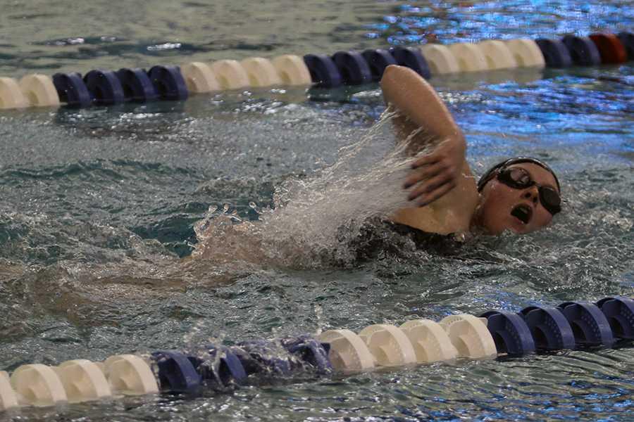 12/12/15 JV girls swimming gallery