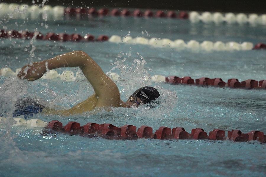 Alexander Bielawski (12) swims freestyle at Sectionals. There were 12 events at Sectionals.