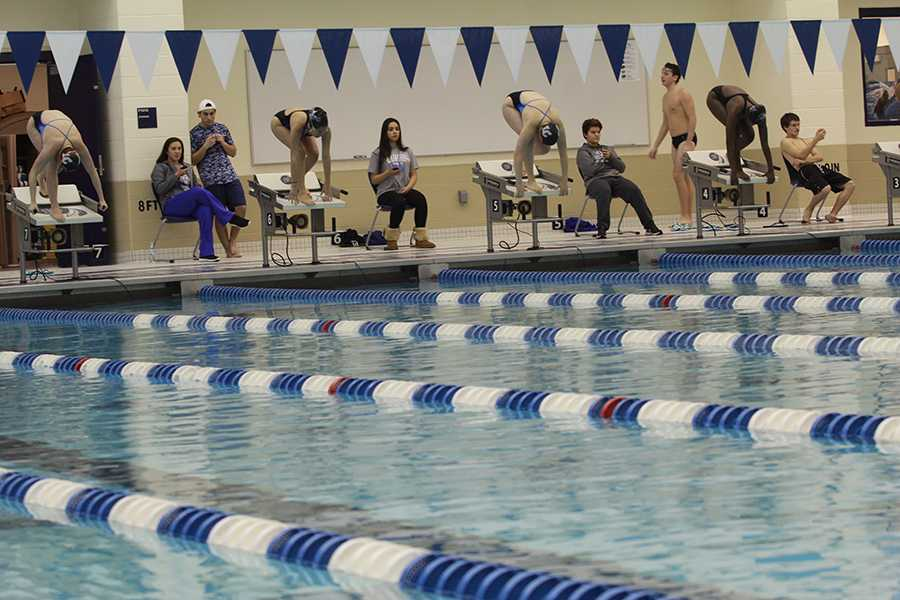 12/6/16 Varsity girls swimming gallery