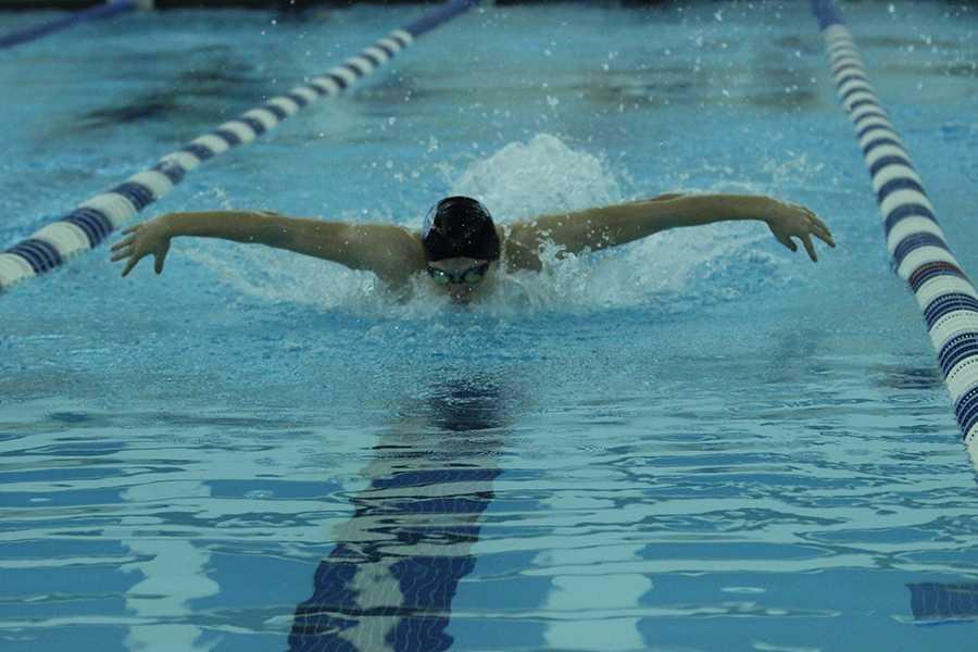 1/5/17 Boys varsity swimming gallery