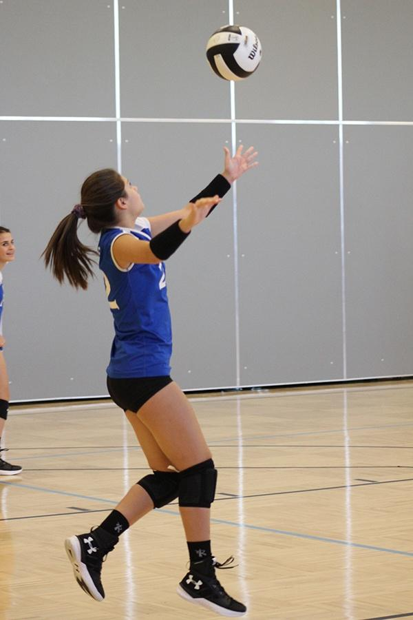 Mina+Cardenas+%289%29+serves+the+ball+to+Michigan+City.+Cardenas+served+many+times+increasing+the+score+greatly.