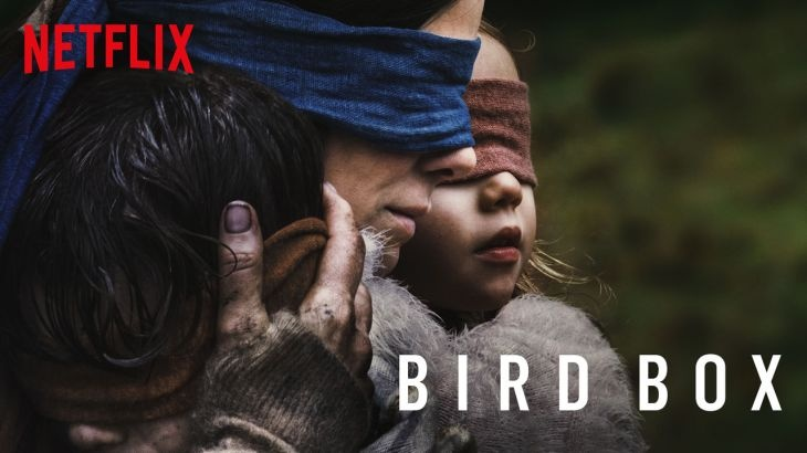 The cover of the Netflix movie Bird Box is shown. This movie was liked by many after its debut.