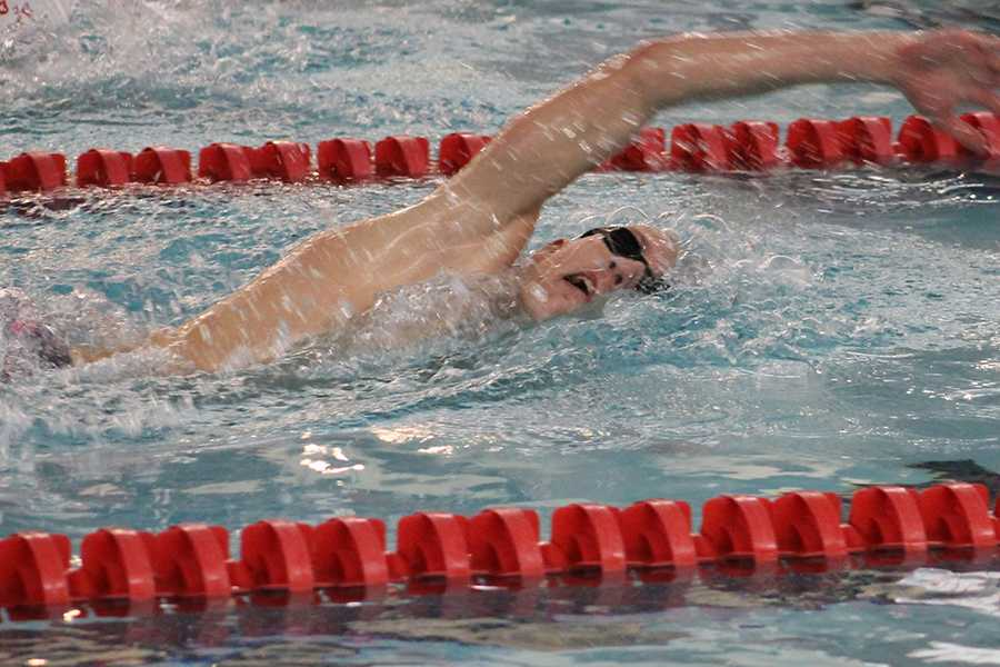02/16/19 Boys Varsity Swimming Sectionals Gallery