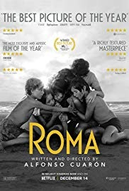 """Roma"" won a total of 178 awards, including three Oscars and a Golden Globe. The film was about the life of a Mexican middle-class maid in the early 1970s."