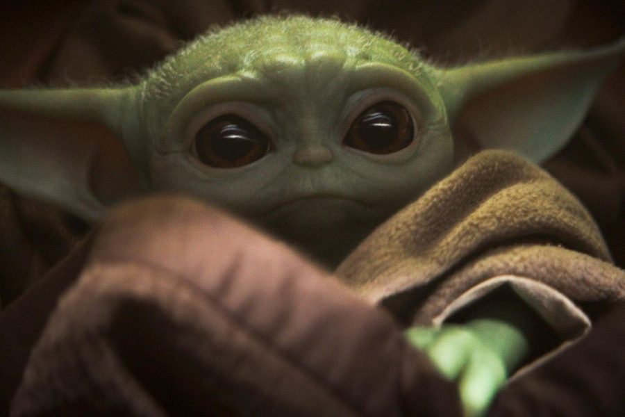 Baby Yoda in The Mandalorian stares up into the camera. Baby Yoda is full animatronic, making him more real for the actors and viewers.