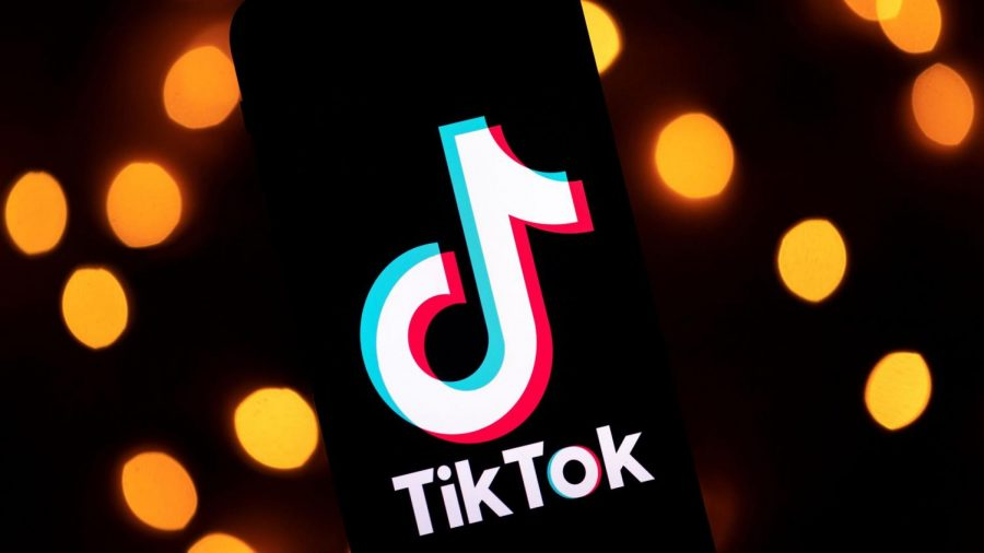 Poll: How many students are active on TikTok?