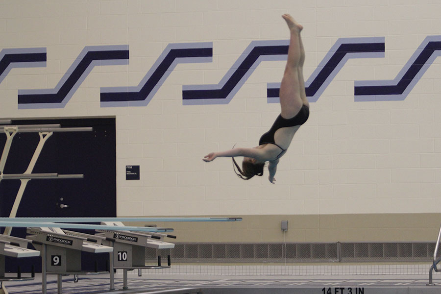 The+JV+swimmer+leaps+off+the+diving+board+and+into+a+flip+during+the+meet.++She+finished+her+flip+and+went+feet+first+into+the+water%2C+giving+her+a+great+score.++