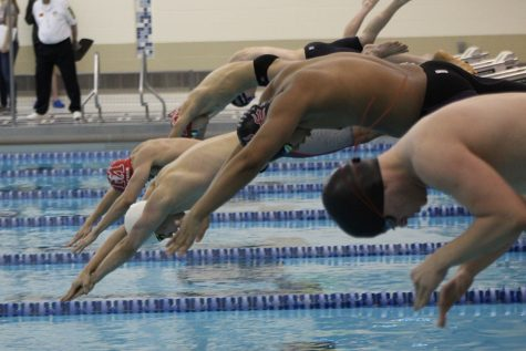Matt Gacek (10) dives into the water during the 100 meter butterfly. This is Matt's second year swimming for Lake Central.