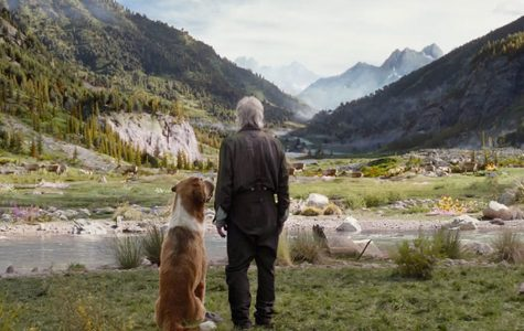 The Call of the Wild was released to theaters Feb. 21, 2020. This courageous film left viewers with a new perspective on friendship and loyalty.