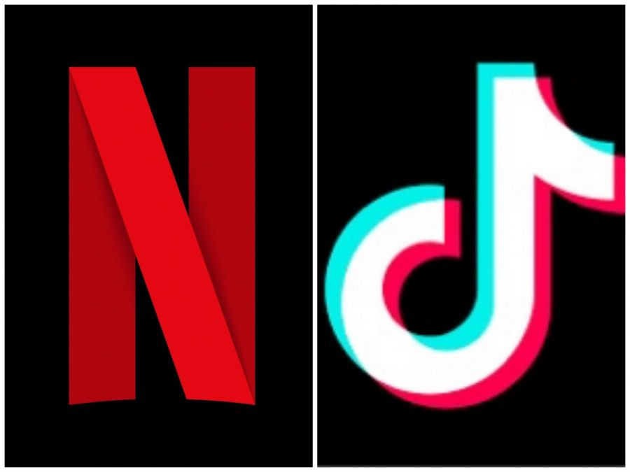 Poll: Are Students Spending More of Their Time on TikTok or Netflix?