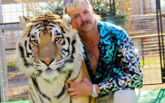 Review: Tiger King: Murder, Mayhem and Madness
