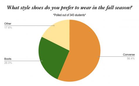 Fall season shoe styles: Poll