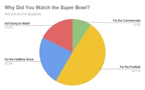 Why Did You Watch the Superbowl?