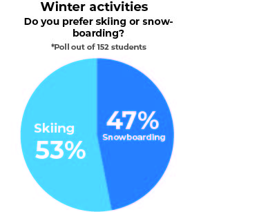 Winter activities poll