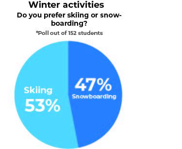 Winter activities poll
